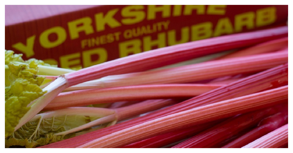 Traditional Yorkshire foods and where to find them - Yorkshire Forced Rhubarb