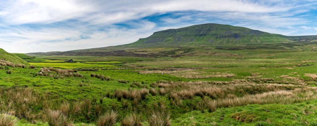 Yorkshire Dales landscape with the Pen-Y-Ghent in the background, North Yorkshire, England, UK