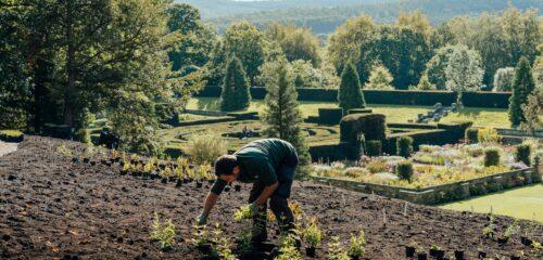 Featured image for Garden Development Walking Tour